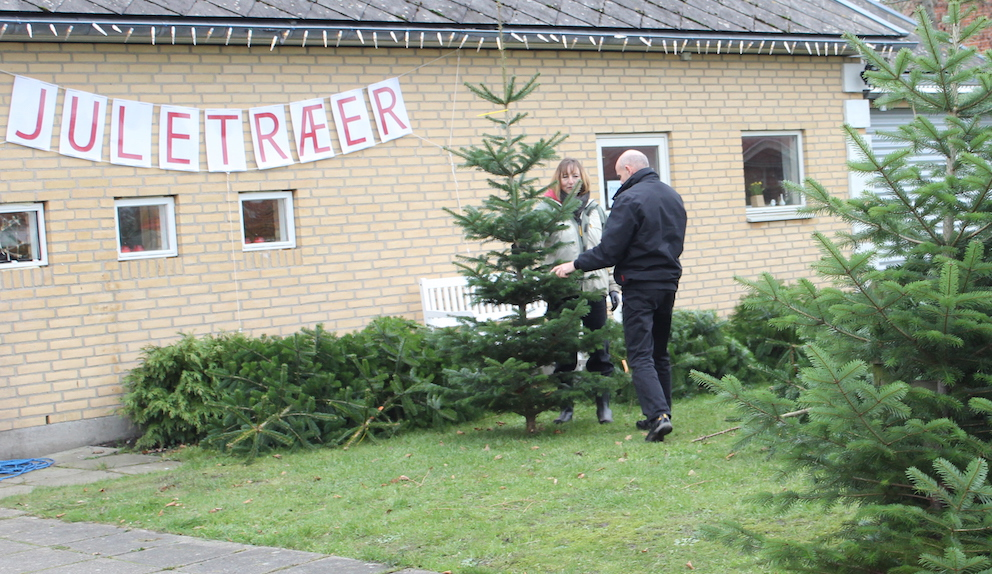Salg af træ